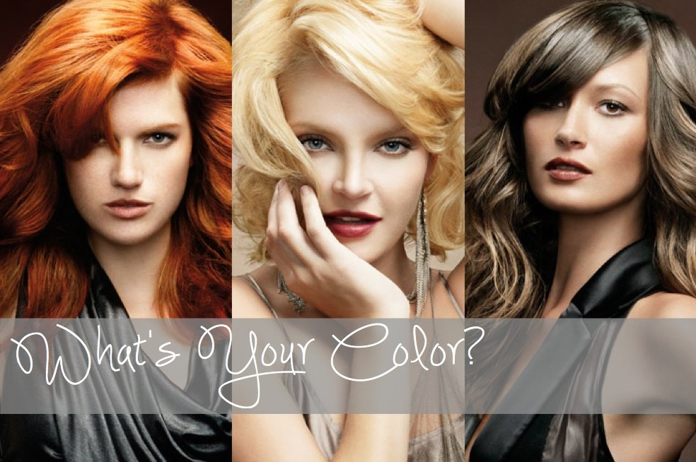 What's Your Hair Color?